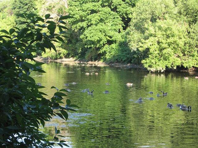 Rivière DuPage