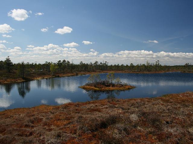 Parc National Kemeri