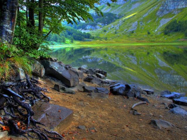 Lac Baccio