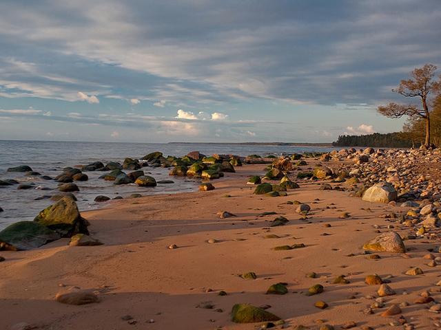 Baltijas jura