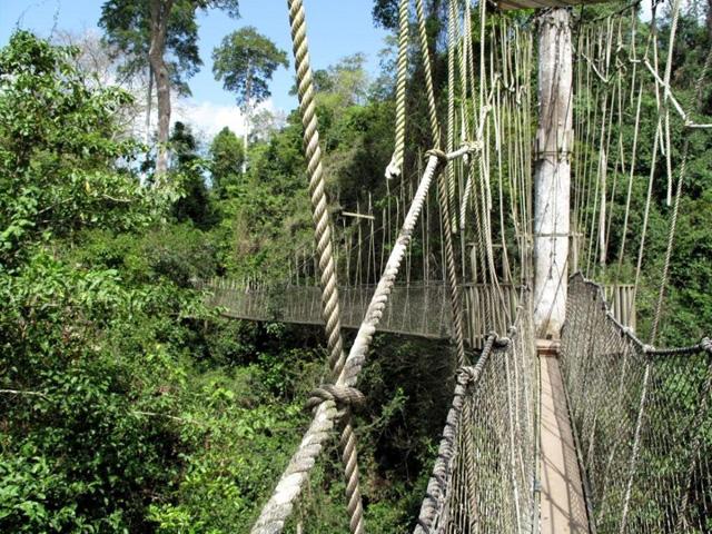 Parc National Kakum