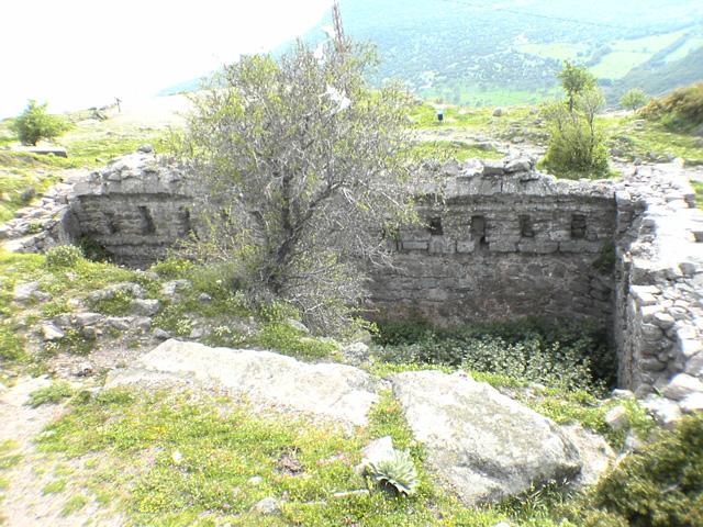 Altinoluk