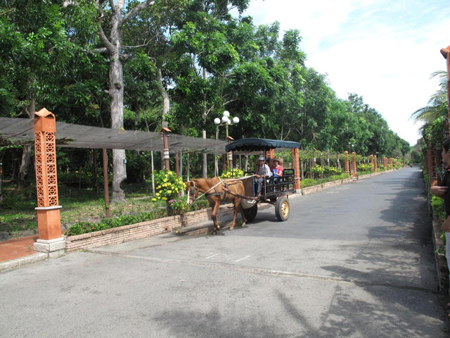 Horse Cart, Binh Chau Hot Spring