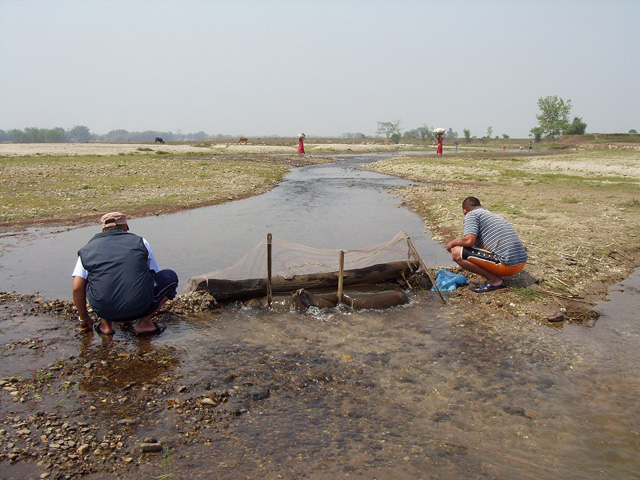 Chaaraali fishing field
