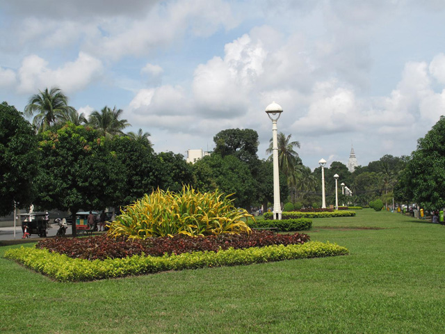 Daun Penh park