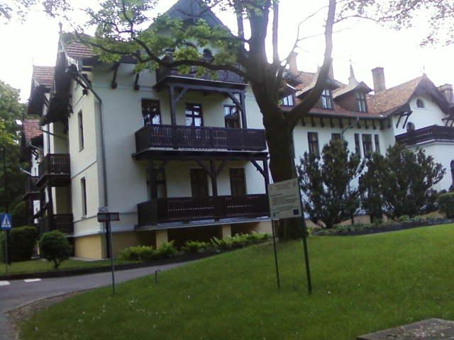 Ludwikowo, Sroda Wielkopolska