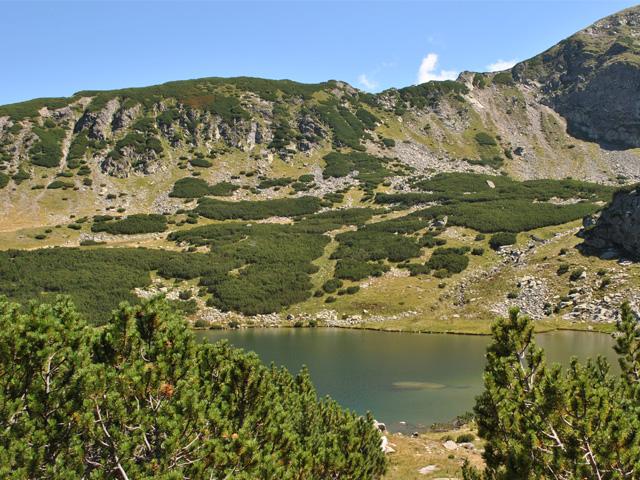 Calcescu Lake
