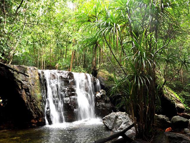 Eco-forest, Suoi Tranh
