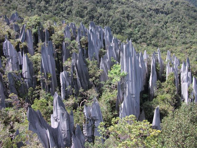 Parc national du Gunung Mulu