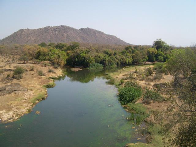 Parc national et sanctuaire faunique de Gir