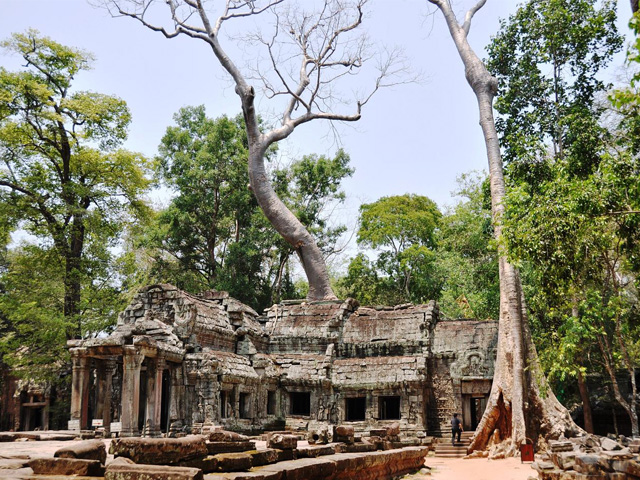 Gallery, Ta Prohm