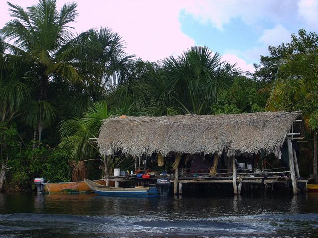 Warao hut