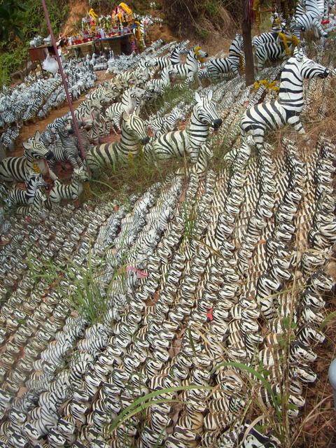 Zebra Shrine