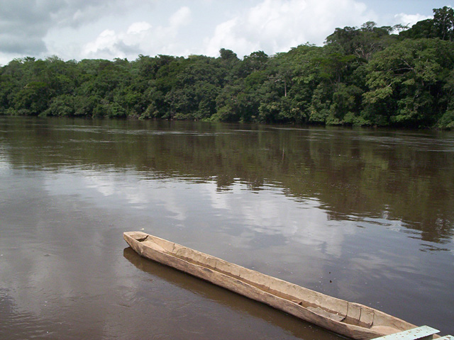 Réserve de faune du Dja