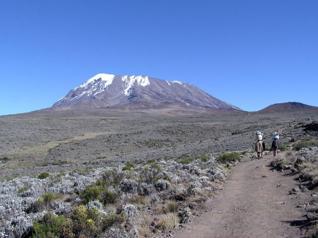 Parc national du Kilimandjaro