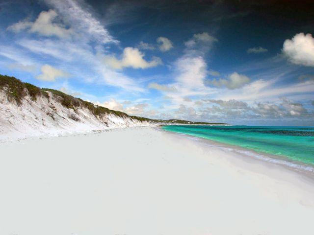 Caïque du Sud