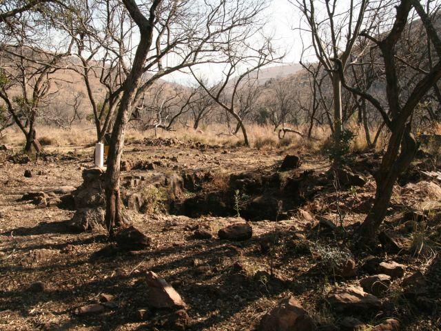 Malapa Fossil Site