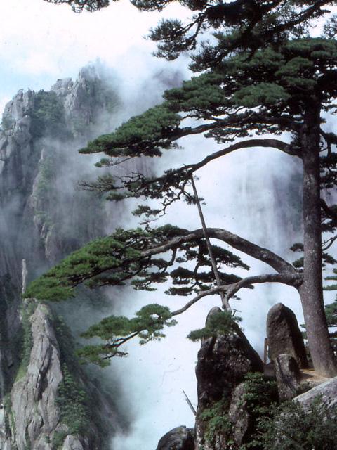 Montagne Huang Shan
