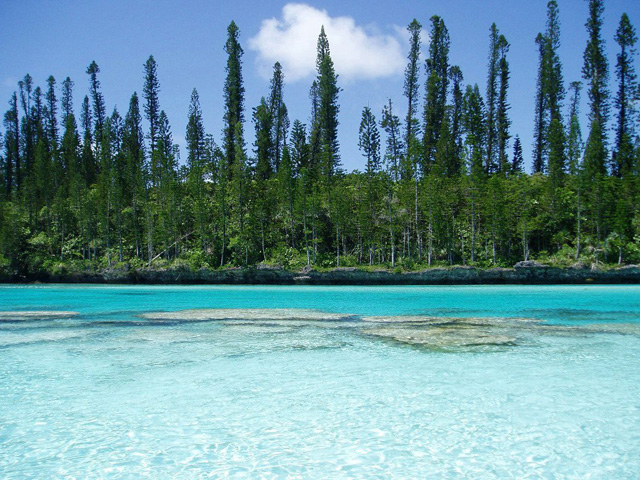 Piscine naturelle isle of pines new caledonia landolia for Piscine naturelle ile des pins