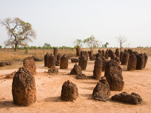 Cercles mégalithiques de Sénégambie