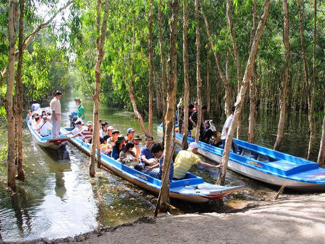 Boats, Tra Su Flooded Indigo forest