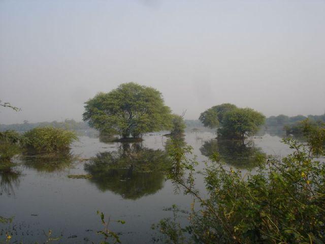 Parc national de Keoladeo
