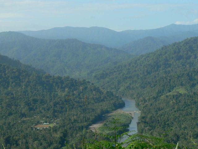 Parc national La Amistad
