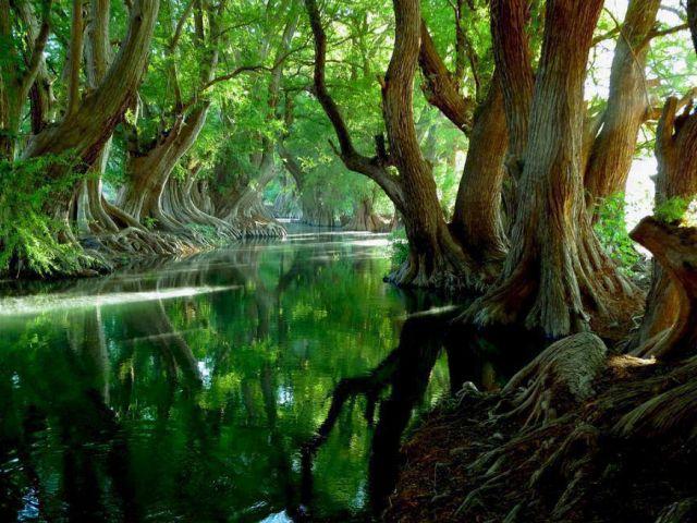 Lago de Camecuaro National Park