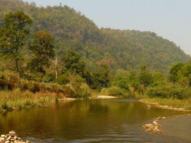 Sanctuaire de faune de Thung Yai