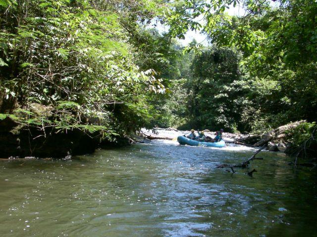 Réserve de la biosphère Rio Platano