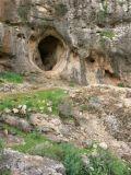 Category Haifa Nahal Me'arot Nature Reserve