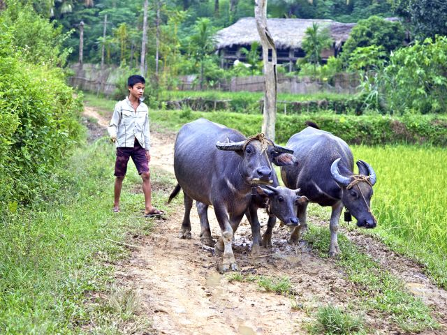 Thac Ba village