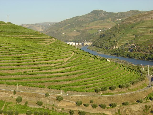 Région viticole du Haut-Douro