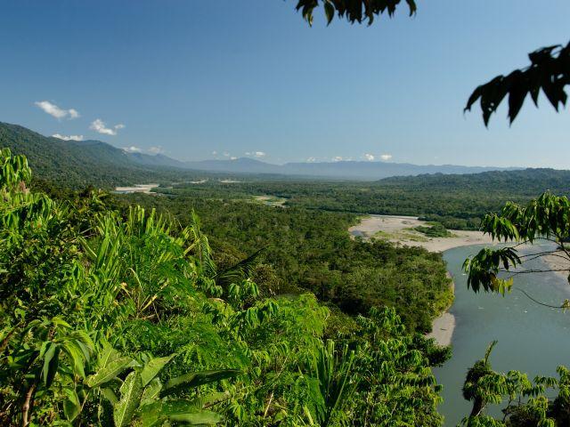 Parc national de Manu