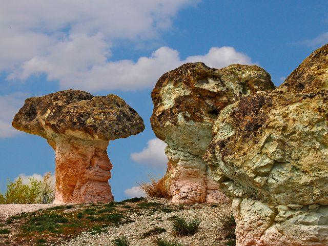 Les champignons de pierre