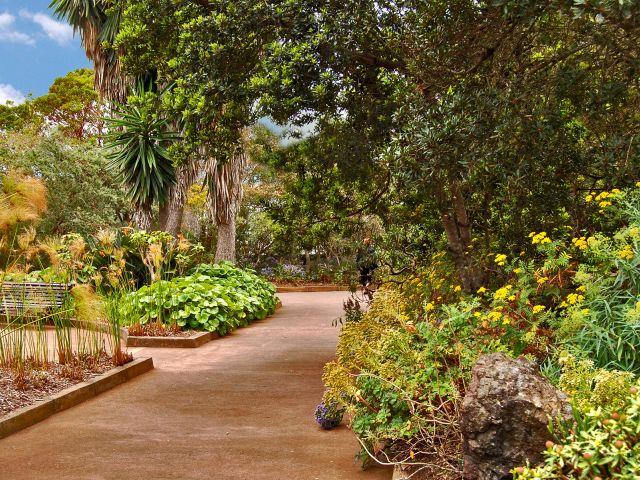 Centre d'accueil du parc national de Garajonay
