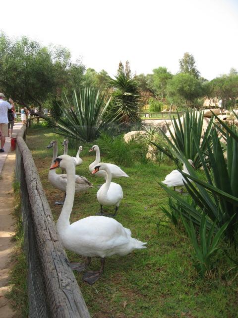 Parc Animalier Friguia