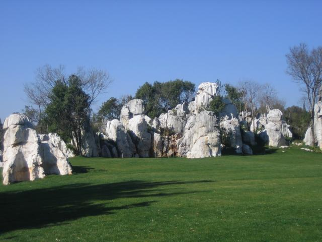 Lesser Stone Forest
