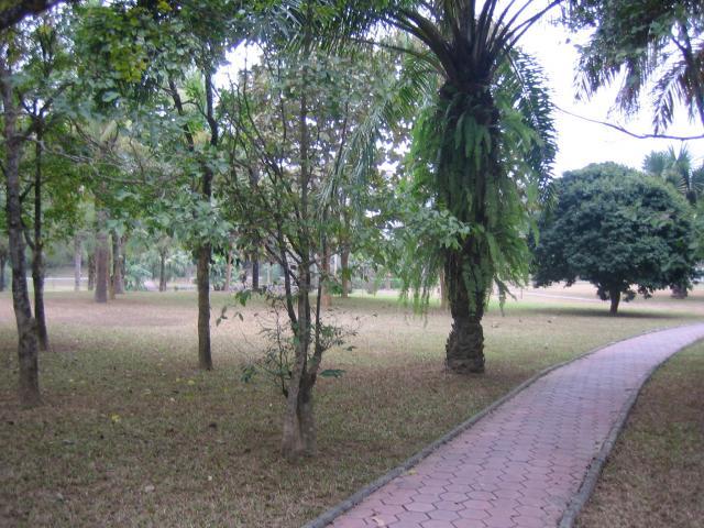 Jardin botanique medicinal