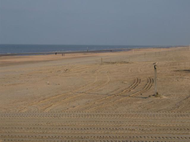 Category De Panne Beach