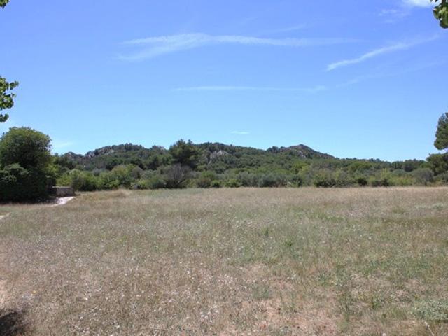 Alpilles view