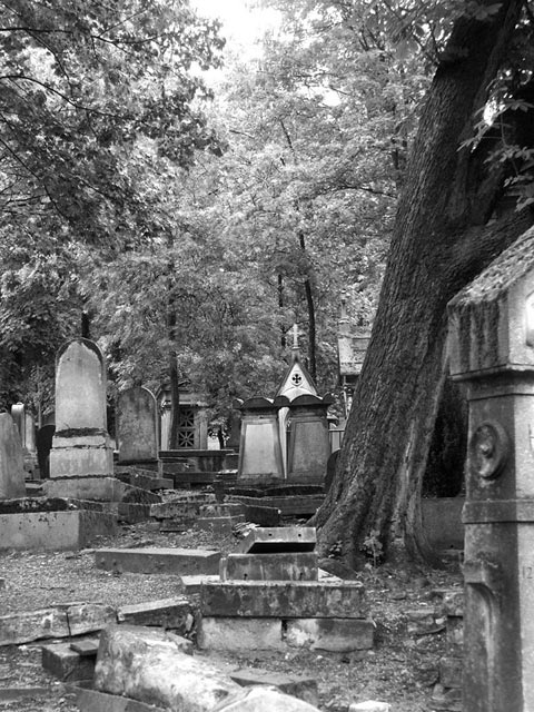 Category Paris Pere Lachaise Cemetery