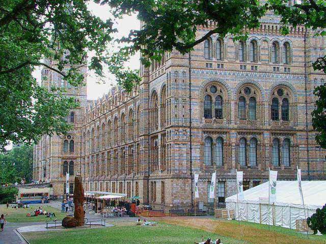 Muséum d'histoire naturelle de Londres