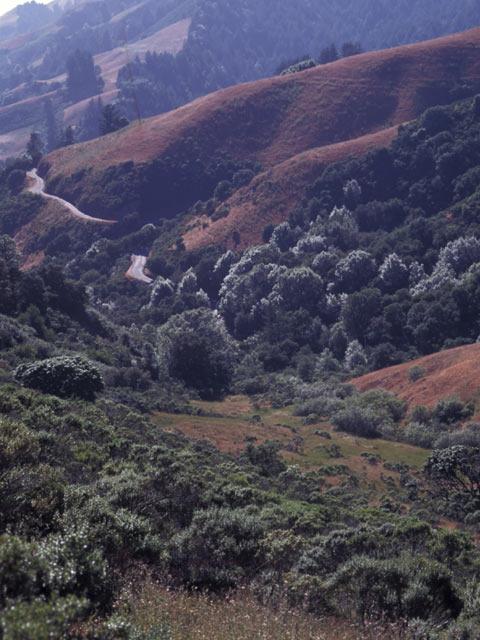 Monts Santa Cruz