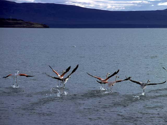 San Marin Lake