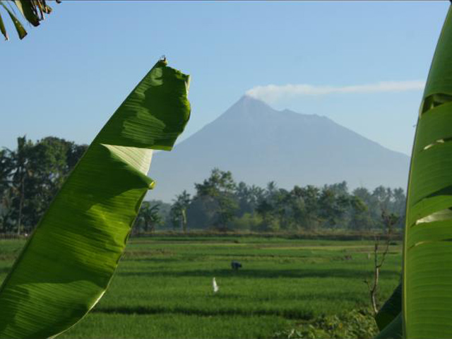 Category Java Mount Merapi
