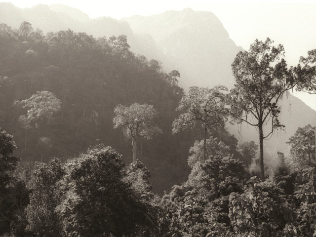 Category Chiang Dao Landscape