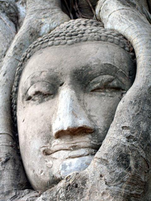 Sandstone Buddha Head