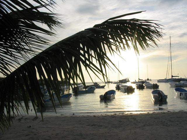 Bayahibe harbor